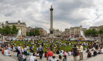 Trafalgar Square temporarily grassed over in May 2007